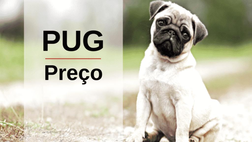 Preço do Cachorro Pug